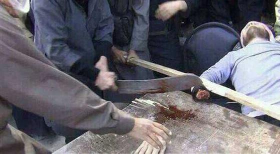 ضئاله حجم أجساد قتلي تنظيم بيت المقدس في سيناء تدل علي أنهم سجناء تم تجويعهم ثم قتلهم