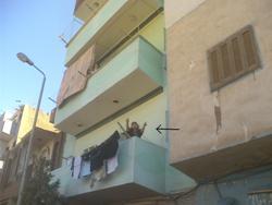 موسوعة مدينة الشهداء نجع حمادى - صفحة 3 Maz9