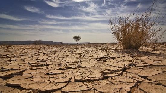 النمسا تتضامن مع دول شرق افريقيا ضد مخاطر الجوع والفقر